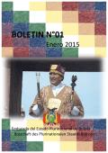BOLETIN N°01
