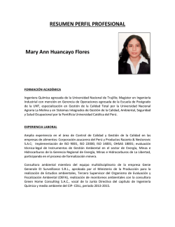 RESUMEN PERFIL PROFESIONAL Mary Ann Huancayo Flores