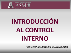 Introduccion Al Control Interno