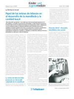 Descargar la traducción de la publicación en formato PDF