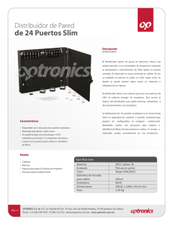 Distribuidor de pared 24 puertos slim