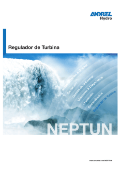 NEPTUN – Regulador de Turbina