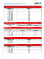Tabla de pesos, Campeonato de Autocross