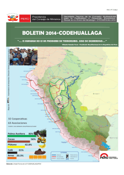 boletin 2014-codehuallaga - Secretaria Técnica Code Huallaga