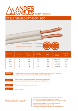 CABLE GEMELO SPT 600V - 90C