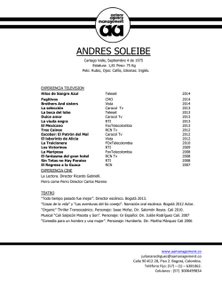ANDRES SOLEIBE