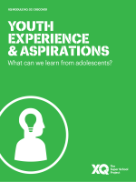 Youth Experience & Aspirations
