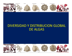 Diversidad y distribución global de algas