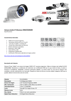 Cámara bullet IP Hikvision DS2CD2020I
