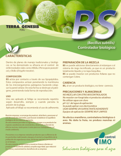 ficha BS carta PERU WEB