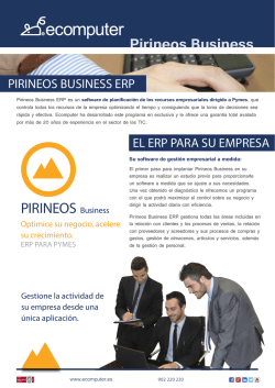 Pirineos Business