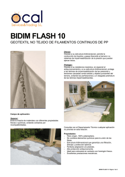 BIDIM FLASH 10