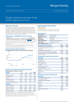 Morgan Stanley Investment Funds Global Opportunity Fund