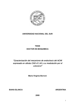 Tesis Borroni, MV - Repositorio Institucional de la Universidad