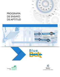 Blue Belt - Quality Consulting