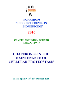 chaperones in the maintenance of cellular proteostasis