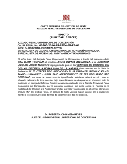 CAUSA PENAL Nro. 00205-2016-15-1504-JR-PE-01