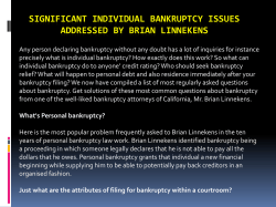 Significant Individual bankruptcy Issues Addressed By Brian Linnekens