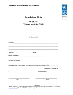Formato de Oferta - UNDP | Procurement Notices
