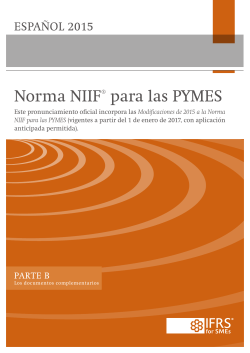 98200 IFRS for SMEs BV spanish Part B Website